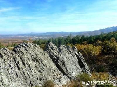 Riaza - Robledal de Hontanares; taxus bastones nordic walking romanico palentino